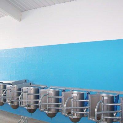 qtyle-anti-fungal-wall-resin-coating