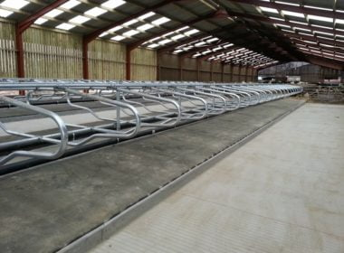 luxury-mattress-cow-cubicle-rubber-bonded-sealed-system